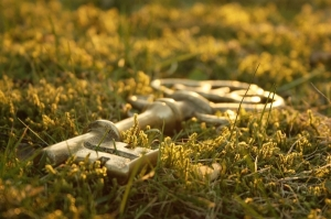 keys on grass
